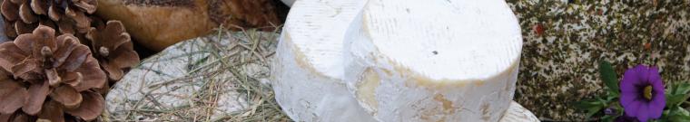 Listino dei prezzi all'ingrosso dei prodotti lattiero-caseari trentini - Camera di Commercio di Trento