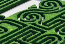 Corso manutentori del verde - Camera di Commercio di Trento