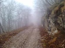 Albo Gestori Ambientali: zone impervie - Camera di Commercio di Trento