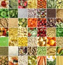 VENDERE PRODOTTI AGROALIMENTARI ALL'ESTERO | webinar - Camera di Commercio di Trento